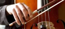 Toda la Música | Audiciones de Viola por producciones para el Gran Teatre del Liceu