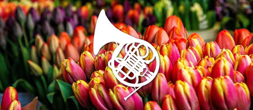 Toda la Música | Primavera Musical [1]   Concierto de bandas municipales en el Auditorio de Tenerife