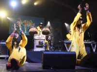 Toda la Música | Espectaculares conciertos entregados al ritmo más primitivo de Kokoko! y Gato Preto