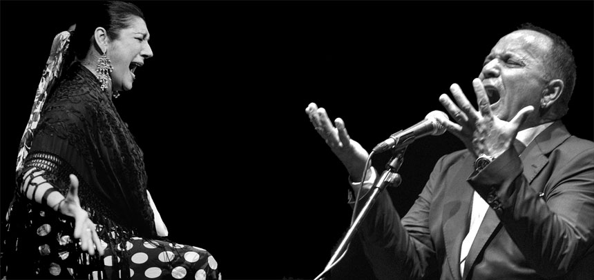 Toda la Música | Suma Flamenca sigue en su segunda semana con trece espectáculos